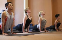 LEVEL 1 Iyengar Yoga Course TERM 2
